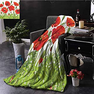 Ladybugs Decorations Collection Luxury special grade blanket Horizontal Border with Poppy Flower Bud Poppies Chamomile Wildflowers Lawn Design Multi-purpose use for sofas etc. W60 x L70 Inch Red Gree
