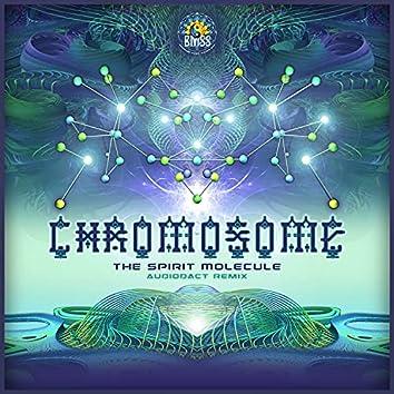 The Spirit Molecule (Audiodact Remix)