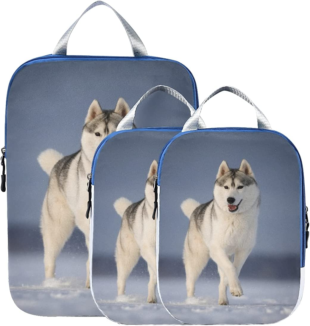 Packing Cube Set Dealing full price reduction Dog Breed Organizer Siberian Husky Bags Luggage Beauty products