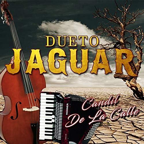 Dueto Jaguar