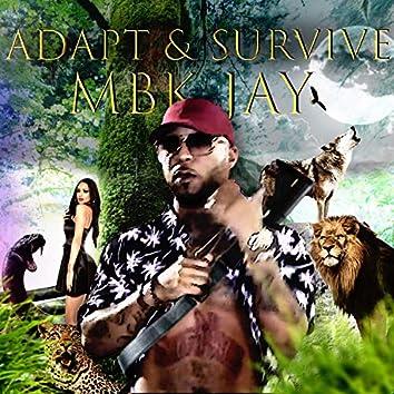 Adapt & Survive