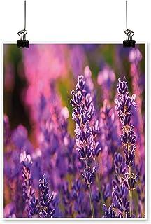 Single paintingFields Summer Near Hungary Tihany Light Green Purple Violet Office Decorations,12