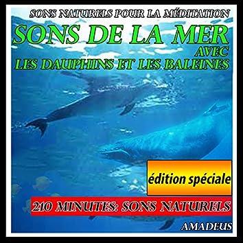 Sons naturels pour la méditation: sons de la mer avec les dauphins et les baleines: édition spéciale