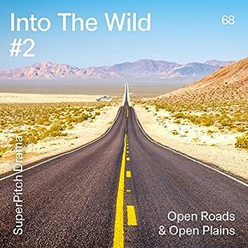 Into the Wild #2 (Open Roads & Open Plains)