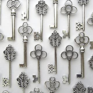 Salome Idea Mixed Set of 30 Large Skeleton Keys in Antique Silver - Set of 30 Keys (Silver Color)