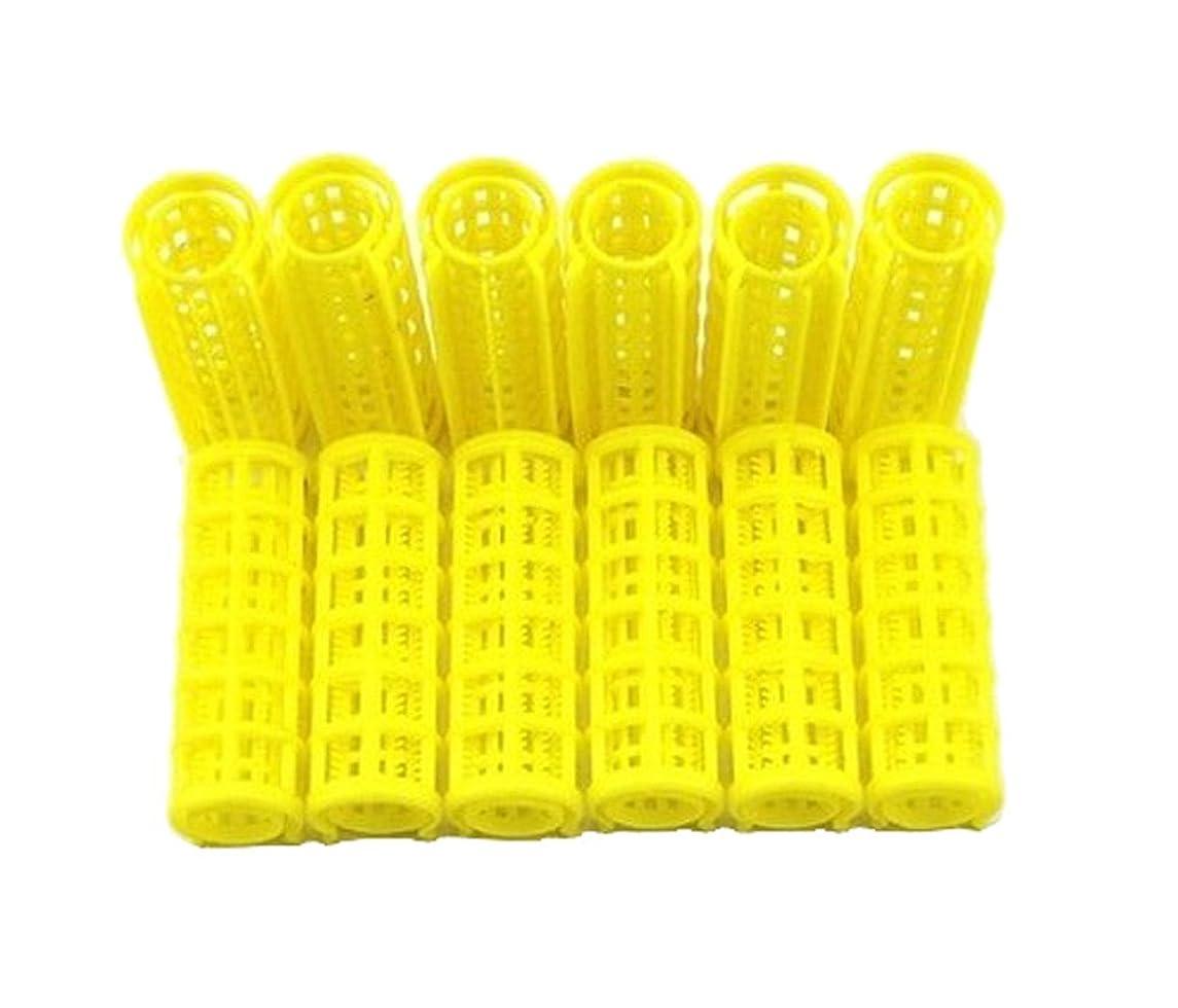 テンション剣エスカレータープラスチックDIYヘアローラーカーラークリップヘアスタイリング(12個)