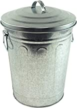 Steven Raichlen Best of Barbecue Galvanized Charcoal and Ash Can with Lid -- SR8012