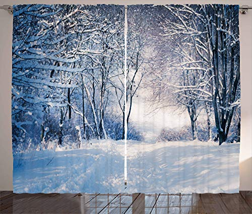 Ambesonne Winter Curtains, Alley in Snowy Forest Cold Freezing Weather Rural Nature Outdoors Woodland, Living Room Bedroom Window Drapes 2 Panel Set, 108' X 84', White Black