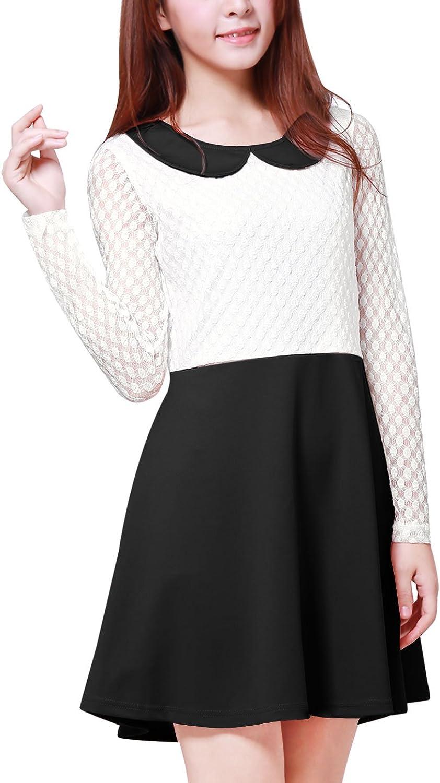 Allegra K Women's Doll Collar Mesh Panel Contrast color Above Knee Dress