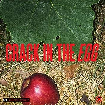 Crack in the Egg
