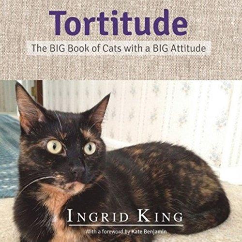 Tortitude audiobook cover art