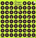 Splatterburst Targets - 10 pack ...