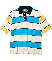 Big Stripe Polo