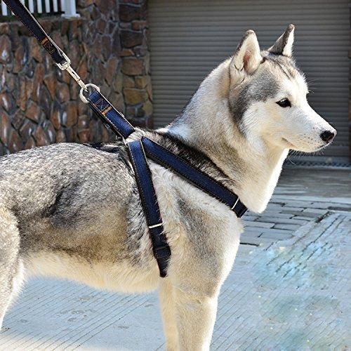 FakeFace Pettorina regolabile anti-strattoni con imbottitura per cani, set con guinzaglio resistente per cani grandi/medi/piccoli e gatti