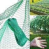 Qune Grünes Anti-Vogelnetz, 4 x 10 m Gartenteich Pflanzenschutz Netz Schädlinge Nager Vögel Kontrolle Netz für Garten Bauernhof, Obst Gemüse, nicht leicht zu reißen und wiederverwendbar