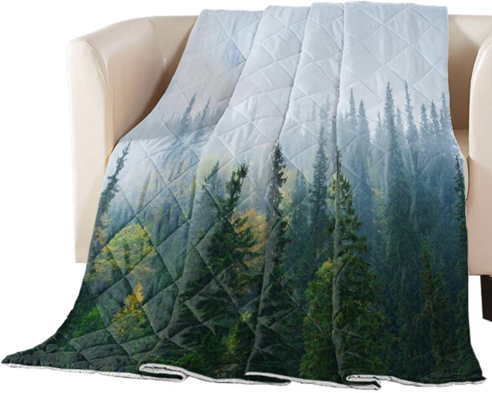 Comforter Duvet Insert Home Luxury Quilt Fo 5% OFF Carpathian Autumn Mountains