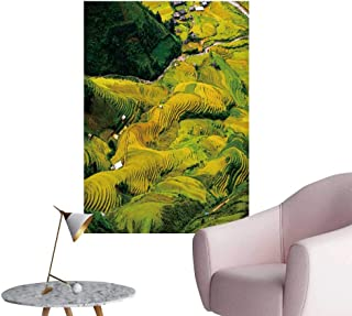 SeptSonne Wall Decals Terrace Rice fiel in Harvest Season in mu g chai Vietnam Environmental Protection Vinyl,20
