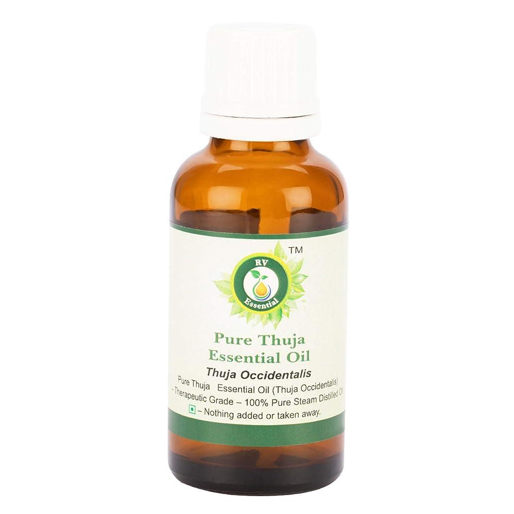 コントラストルール離すピュアThujaエッセンシャルオイル300ml (10oz)- Thuja Occidentalis (100%純粋&天然スチームDistilled) Pure Thuja Essential Oil