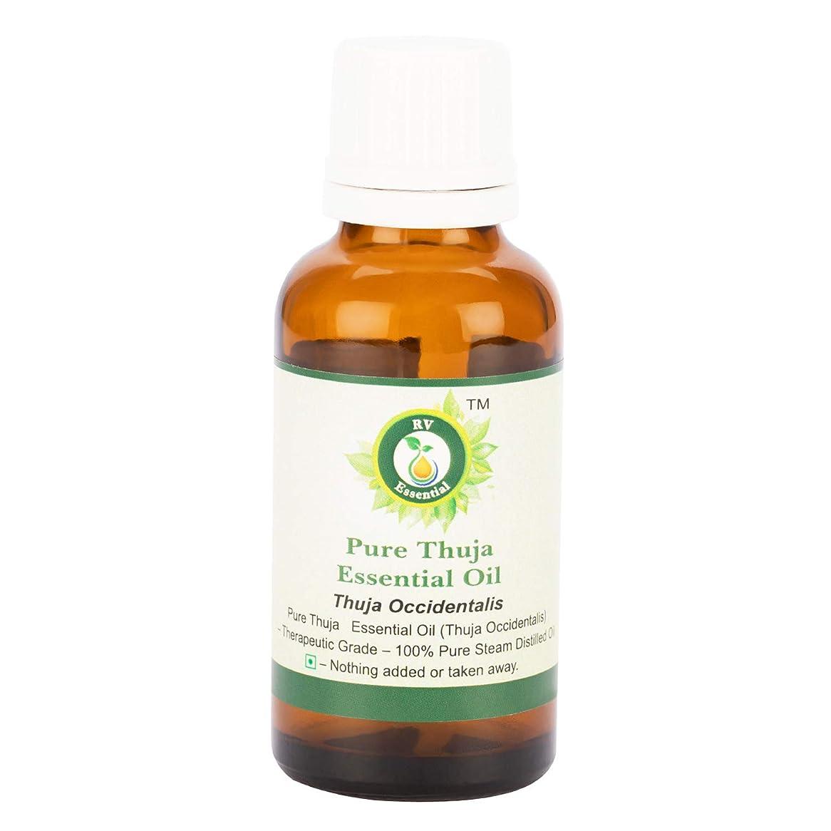 不一致氏配偶者ピュアThujaエッセンシャルオイル300ml (10oz)- Thuja Occidentalis (100%純粋&天然スチームDistilled) Pure Thuja Essential Oil