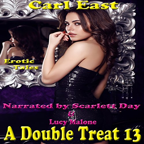 A Double Treat 13 audiobook cover art