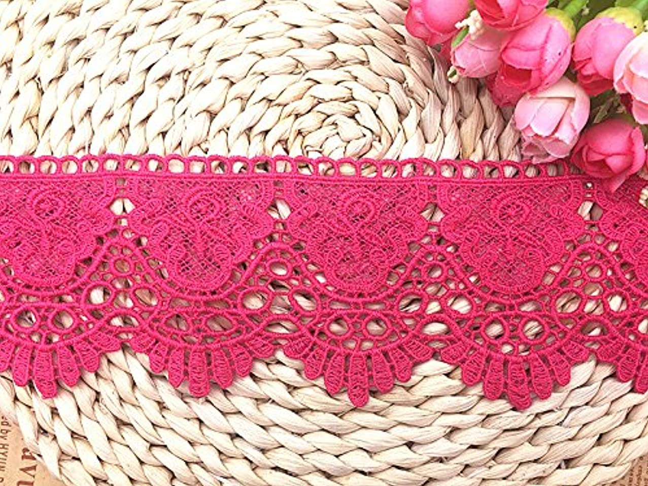 9CM Width Europe Crown Pattern Inelastic Embroidery Lace Trim,Curtain Tablecloth Slipcover Bridal DIY Clothing/Accessories.(4 Yards in one Package) (Plum)