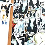 22 Unids/Set Vintage Cartoon Cute Black Cat Sticker DIY Craft Scrapbooking Álbum Junk Journal Happy Planner Pegatinas Decorativas