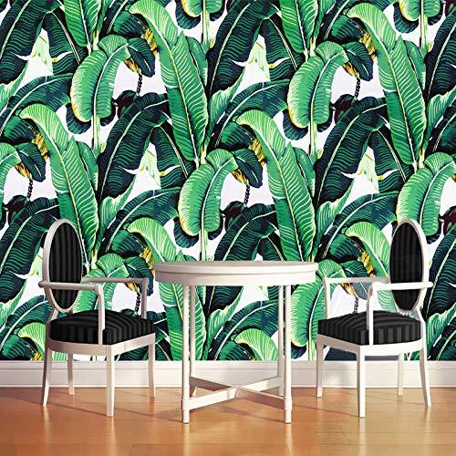 Behang in Europese stijl, retro, tropisch bos, vocht, plant, bananenblad, fotobehang, muurschildering, watermeloen, achtergrond 350cm (W) x 245cm (H)
