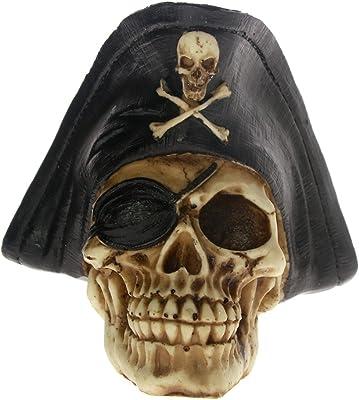 Skeleton Decorative Roses /& Skull Captain Pirate Figurine Jewelry Trinket Box