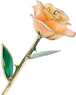 ZJchao Gold Rose - Reloj de pulsera, color rojo champán
