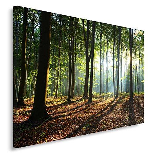 Feeby, Leinwandbild, Bilder, Wand Bild, Wandbilder, Kunstdruck 80x120cm, Wald, Baum, Landschaft, Natur, GRÜN