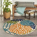 Nourison Aloha Indoor/Outdoor Floral Blue Multicolor 5'3' x ROUND Area Rug (5'xROUND)