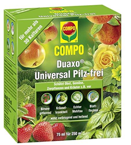 COMPO Duaxo Universal Pilz-frei - 75 ml