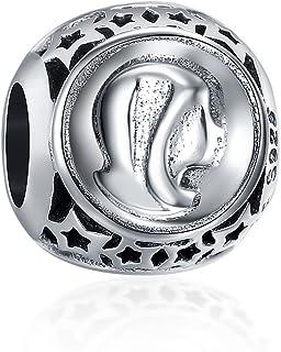 SILVERCUTE Bead for Bracelet Necklace, Enamel Hollow Star 12 Zodiac Signs Design 925 Sterling Silver Charms