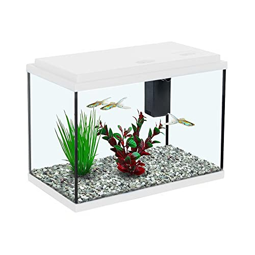 Small Aquarium Amazon Co Uk