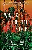 Walk In The Fire (Judah Cannon Book 2)