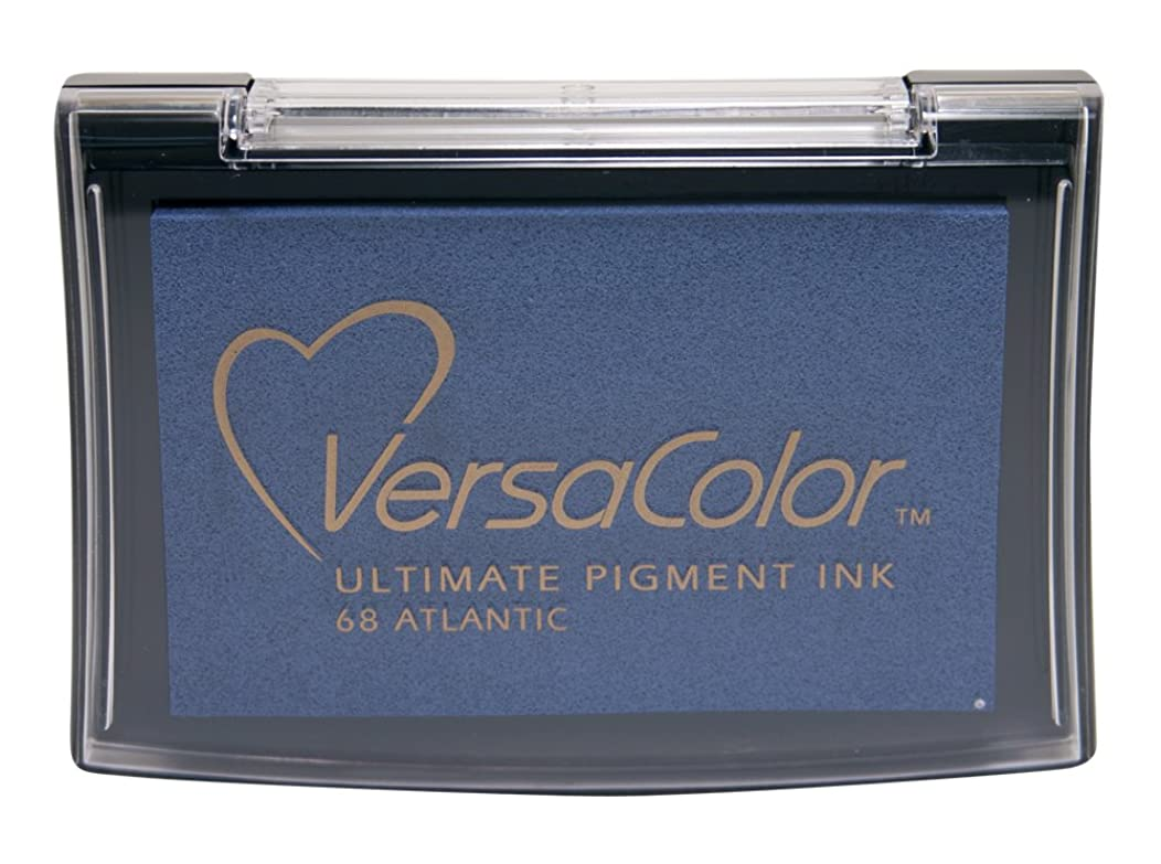 Tsukineko Full-Size VersaColor Ultimate Pigment Inkpad, Atlantic