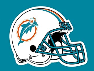 miami dolphins number 28