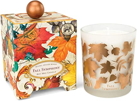 Michel Design Works Fall Symphony Soy Wax Candle, 14 Oz, 1ct