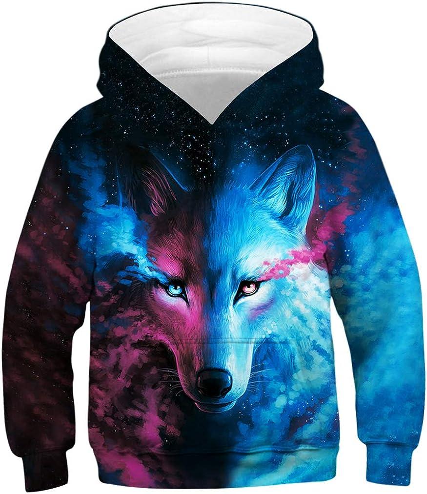 HaniLav Unisex Boy Girl 3D Print Graphic Sweatshirts Pullover Kids Hoodies 6-16Y