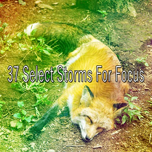 37 Select Storms for Focus