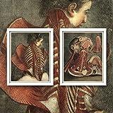ZHJJD Cadáveres Anatomía Antigua Arte de la Pared Pintura de la clínica de la Vendimia Impresiones en Lienzo Cuadros médicos Díptico Hospital Decoracion del consultorio del médico 40x50cmx2 Sin Marco
