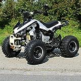 Kinder Quad S-12 125 cc Motor Miniquad 125 ccm weiß/schwarz Panthera