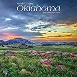 Oklahoma Wild & Scenic 2022 12 x 12 Inch Monthly Square Wall Calendar, USA United States of America Southwest State Nature