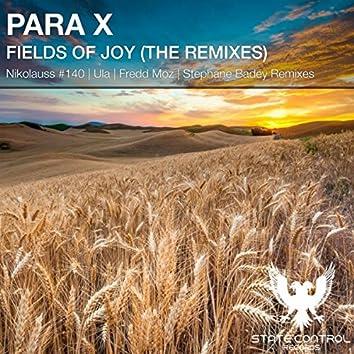 Fields Of Joy ( The Remixes)