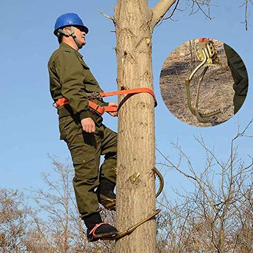 ETSGB Klettern Bäume Artefakt, Edelstahl Klettern rutschfest Baumsteigeisen Forstzubehö, Für Die Jagd Überwachung, Obst Pflücken, Kokosnuss,500Model