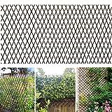 Melchef Nature Willow Trellis Expandable Plant Support Plant Climbing Lattices Trellis Willow Expandable Trellis Fence for Climbing Plants Support 36x92 Inch,Double Panel