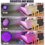 Anipaw Black Light UV Flashlight, Portable 100 LED UV Light Blacklight Detector for Pet (Dog/Cat) Urine Detection, Pet Stains, Bed Bug, Matching with Pet Odor Eliminator 16