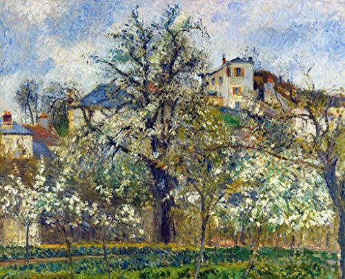 Kunst für Alle Impresión artística/Póster: Camille Pissarro Potager et arbres en Fleurs Printemps Pontoise - Impresión, Foto, póster artístico, 100x80 cm