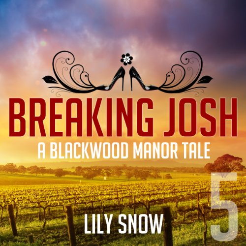 Breaking Josh 5 audiobook cover art