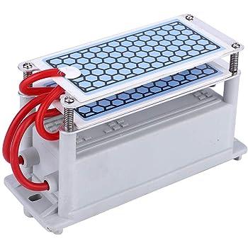 Generador de ozono 10g Purificador de aire para el hogar ...